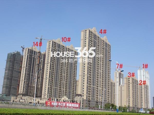 中海凤凰熙岸1-4#、7#、10#、14#楼工程进度(2015.4)