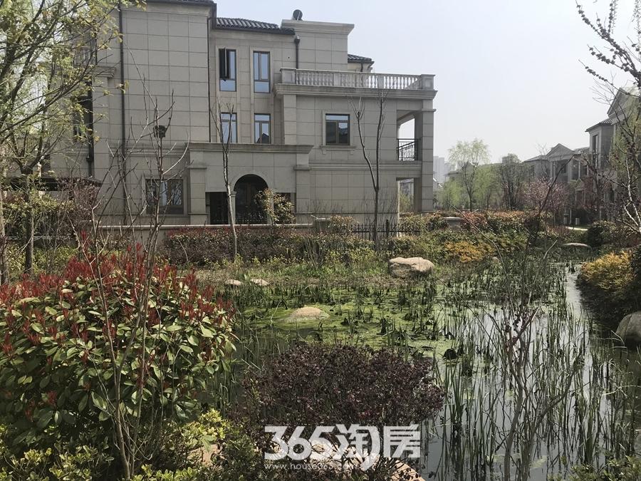 凤鸣湖公寓实景图