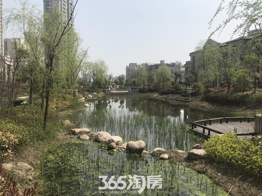 凤鸣湖公寓环境图(2018.3摄)