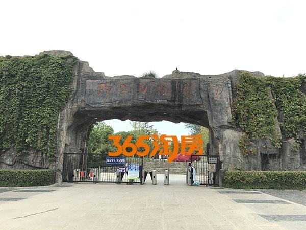 保利西山林语周边景区实景图(2017.9.30)