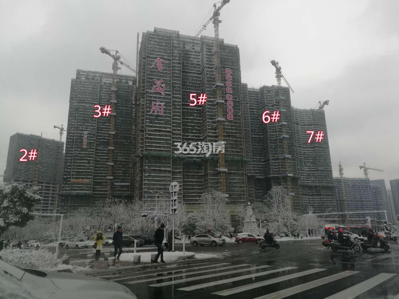 滨江金茂府实景图
