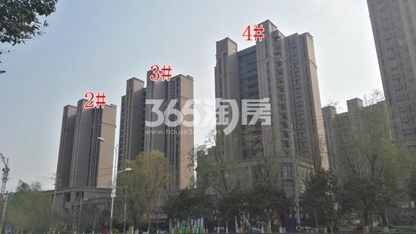 恒大滨河左岸一期2-4#工程实景(12.14)
