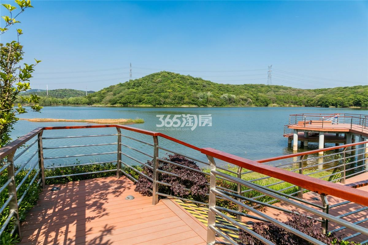 瑞安翠湖山外部景观(11.6)