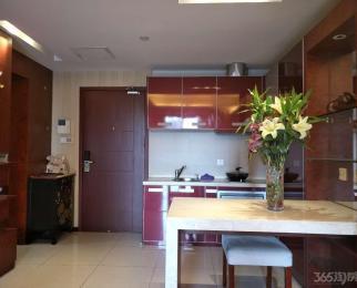 钛合国际1室1厅1卫89平米整租豪华装