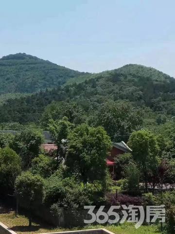 仰望茅山福源 呼吸5a风景区自然山水 精装交付公寓洋房