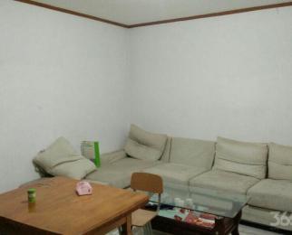 科苑新村2室1厅1卫82.6平米整租精装