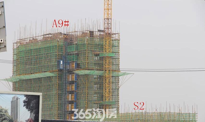 东方樾府A9#工程进度(2017.7)
