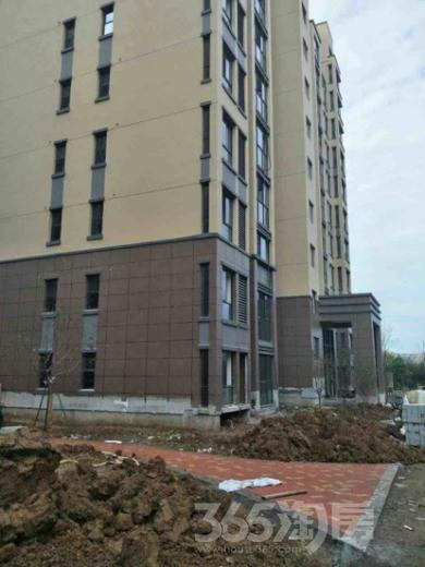 发能凤凰城4室2厅2卫215平米毛坯使用权房2016年建