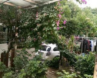 急售丽景花城一楼带花园