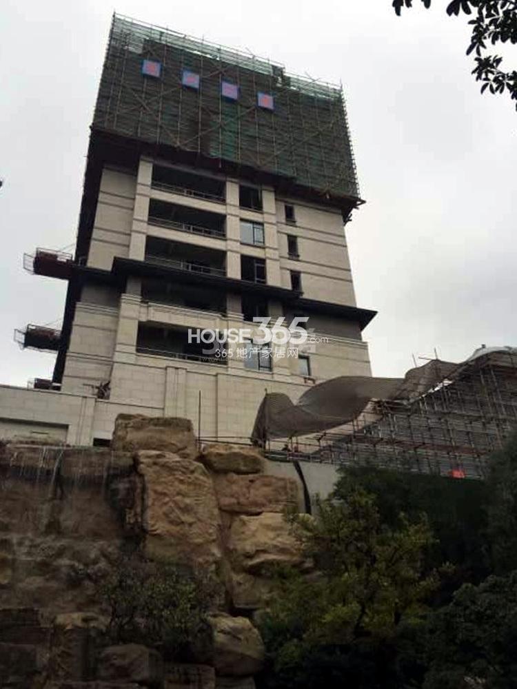 高科荣境在建楼栋实景图(11.13)