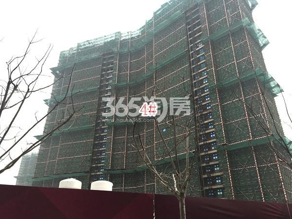 九龙仓碧玺高层4#楼实景图(2018.1 摄)