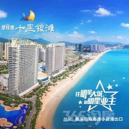 广东省惠州市碧桂园十里银滩1室1厅1卫46平米简装产权房20