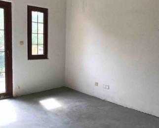 卧龙湖风情小镇4室2厅2卫264平米整租毛坯