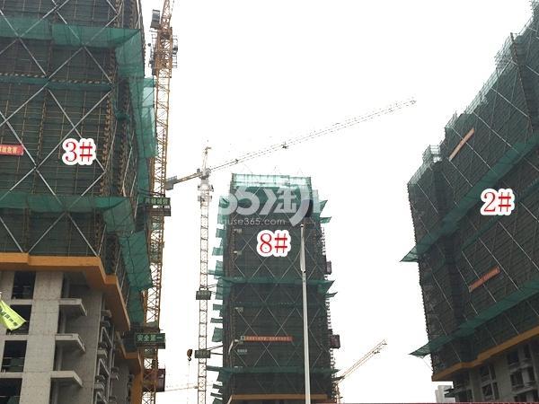 栖霞东方天郡三期高层2#、3#、8#楼实景图(2018.2 摄)