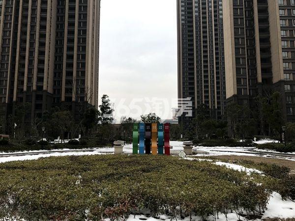 蚌埠国购广场 二期小区绿化 201802