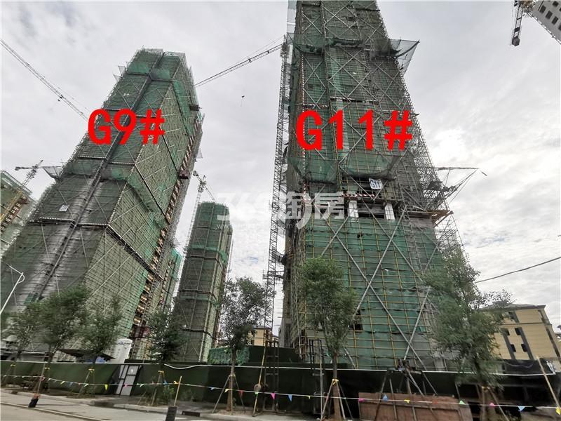 枫林学府在建G9、G11#楼实景图(9.25)