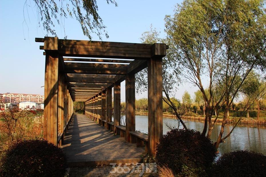 东方蓝海周边湖景——汀棠公园