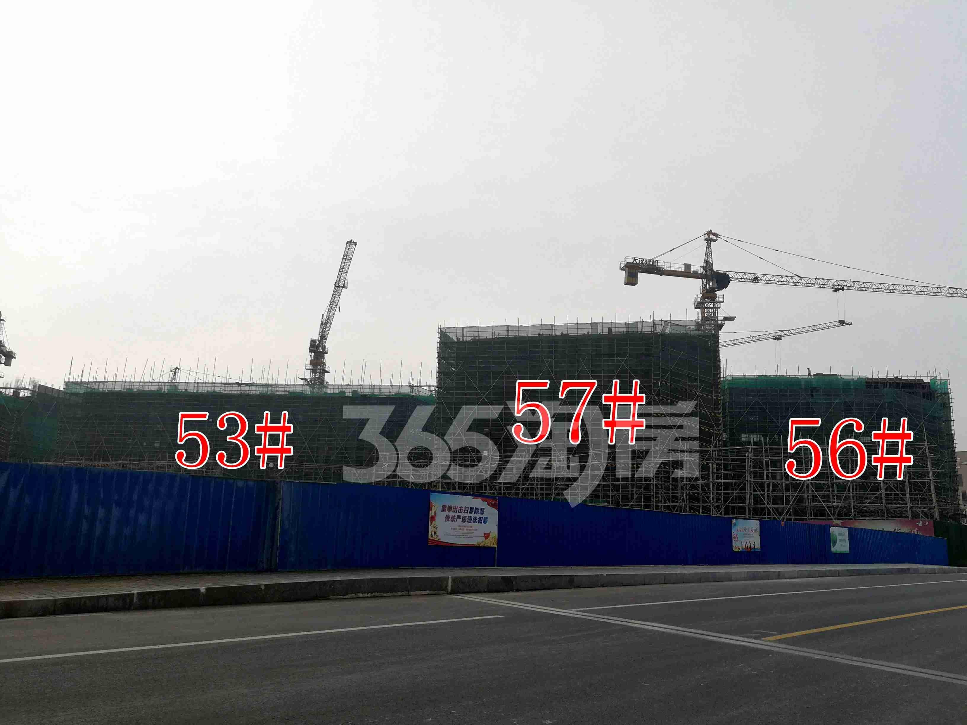 观澜别院53、57、56#工地实景图(9.26)