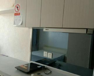 巴比伦国际广场1室1厅1卫45平米整租精装