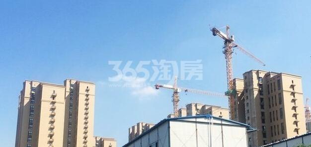 中海康城实景