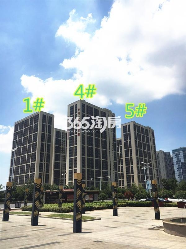 东方万汇城南区万汇尊邸实景图(9.7)