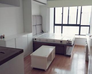 秋浦河路地铁口玲珑大厦37平米精装修家电齐全