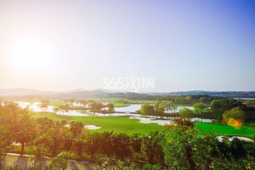 美好紫蓬山壹号周边环境实景图(2018.4.3)