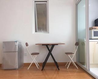京商商贸城1室1厅1卫47�O整租豪华装首次出租