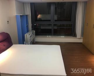 凤凰国际公寓1室1厅1卫60平米整租精装