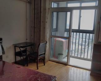 金水童话名苑1室1厅1卫36平米精装整租