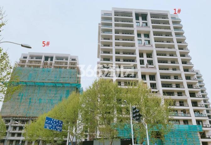 海玥花园A地块1、5#进展图(5.28)