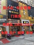 江宁滨江开发区2700平跃层 另送4000平自建房投资自用都可以