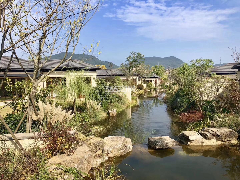 青山湖玫瑰园