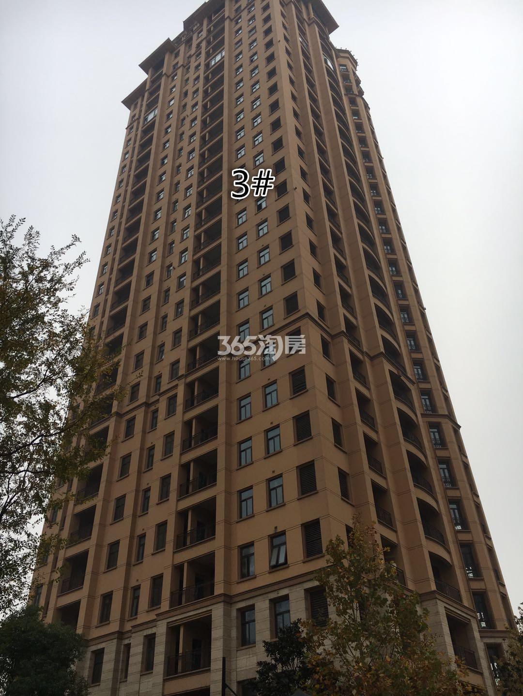 雅居乐滨江国际3号楼实景图(11.15)