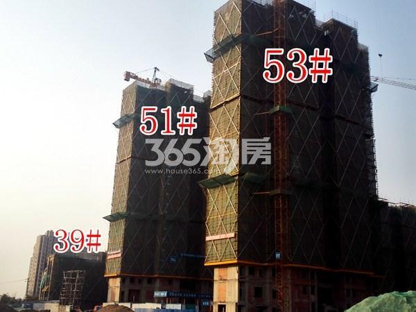 绿地工润和平壹号四期51#、53#、39#工地实景图(11.15)
