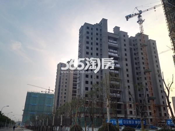 绿地工润和平壹号二期实景图2(11.10)