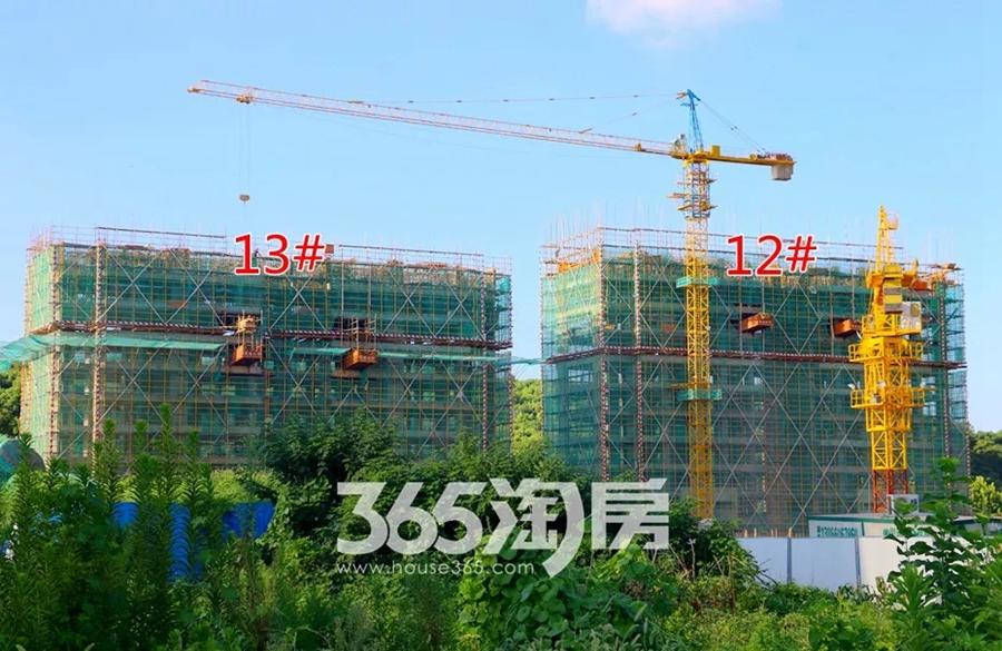 伟星公园天下12#、13#工程进度图(2018.8摄)