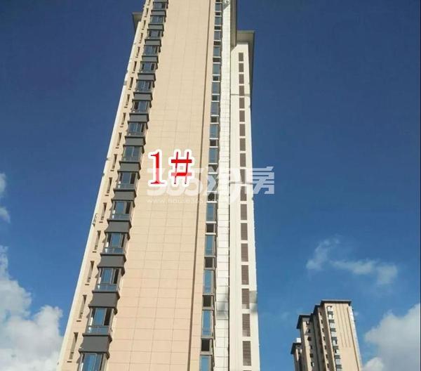 蓝光雍锦里高层1#楼实景图(2018.8 摄)