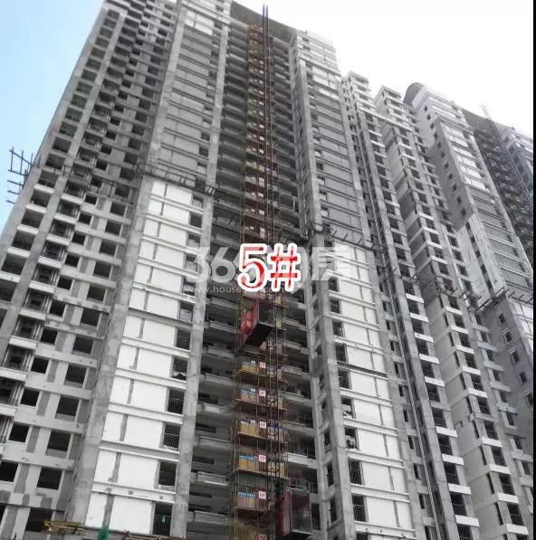 蓝光雍锦园高层5#楼实景图(2018.8 摄)