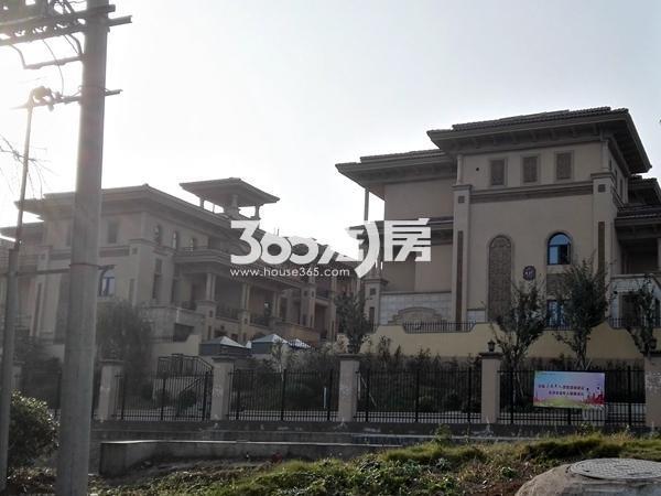 徐州新房 铜山区 半山御景 (别墅)