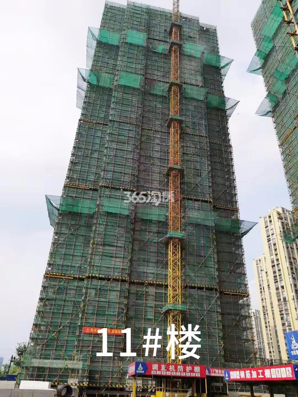 绿都云和湖项目11号楼施工进程(2019.8)