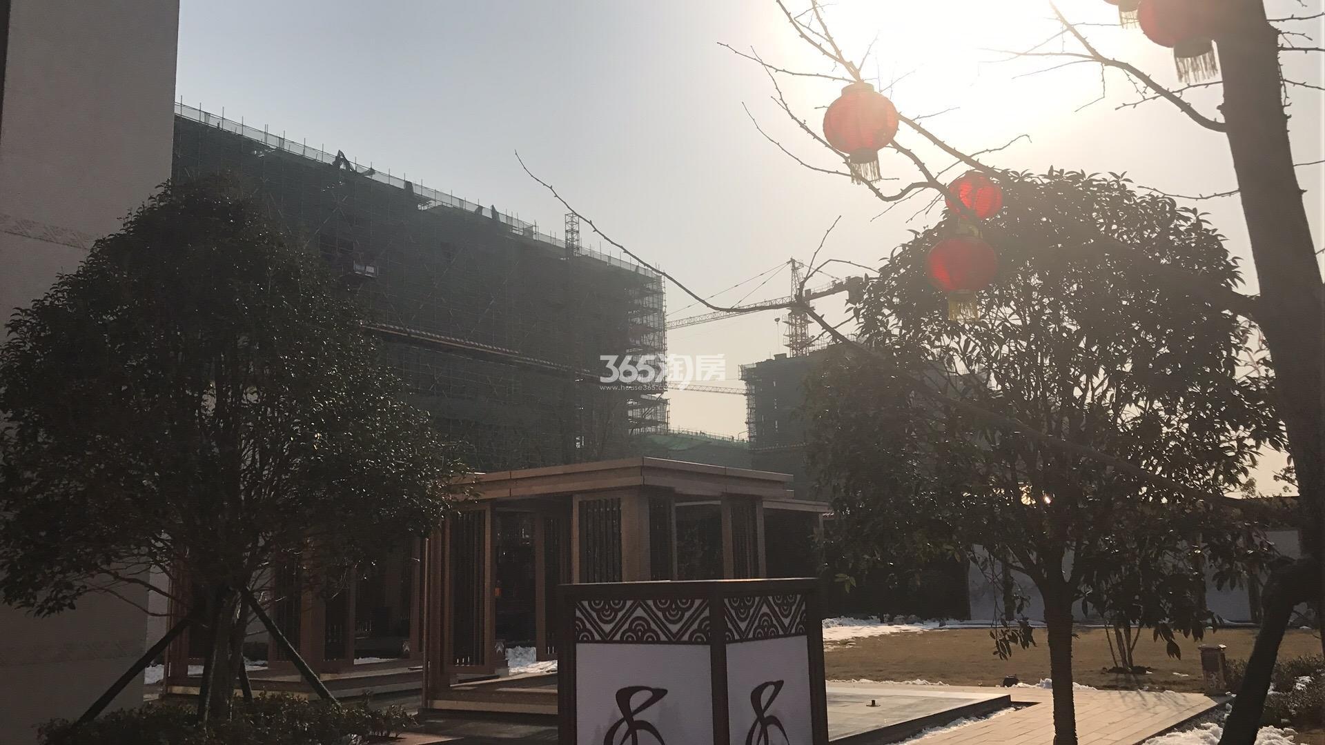 江山薈4号楼实景图(2.22)