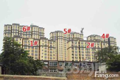华美半山雅居2室2厅1卫83平米精装产权房2017年建