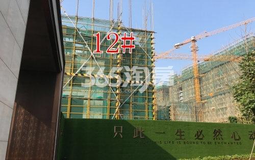时代城12#楼工程进度实景(2019.10.29摄)