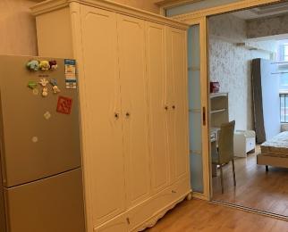 中商万豪中心公寓1室1厅1卫65平米整租豪华装