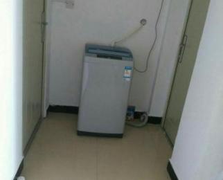 德信泊林春天3室2厅2卫18平米合租精装