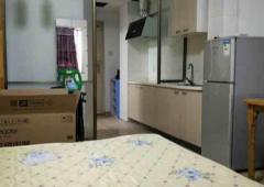 托乐嘉单身公寓1室1厅1卫34.00㎡94.00万元