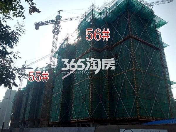 绿地工润和平壹号四期56#、55#工地实景图(9.13)