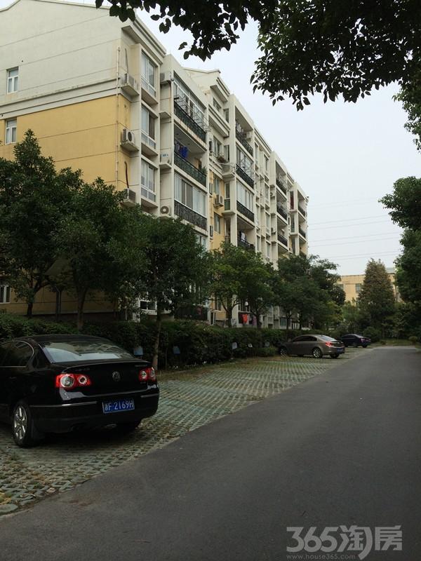 【宜家花城】有租的汽车位 送露台