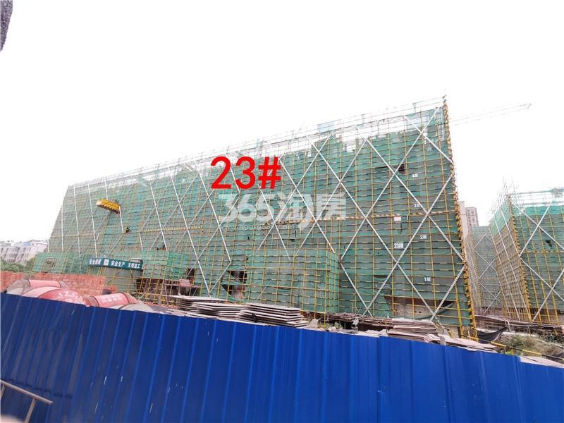 绿地理想城悦湖公馆在建23#楼实景图(6.25)